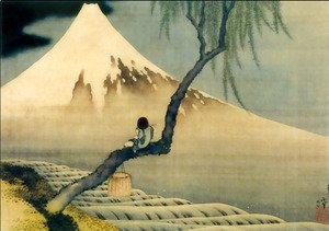 boy-on-mount-fuji